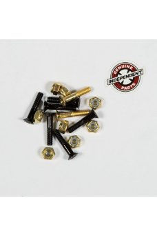 Independent - Genuine Parts Phillips Hardware 1 in Black/Gold
